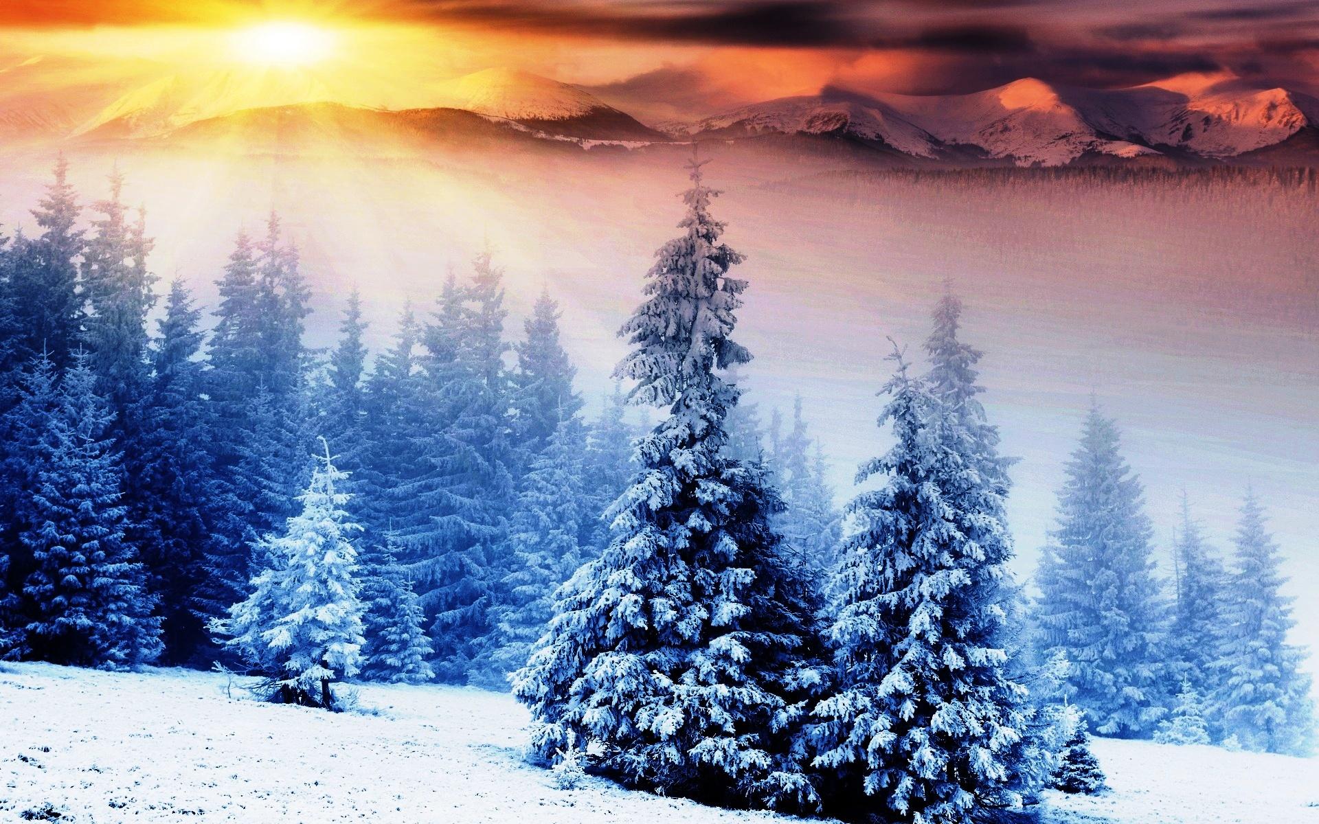 Pemandangan Musim Dingin Di Gunung
