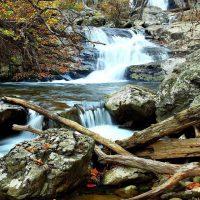 Lukisan Naturalisme Pemandangan Alam